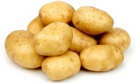 «Картошка» — в 1958 году и сейчас