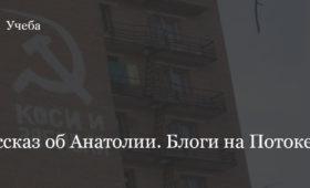 Анатолий. Рассказ Анастасии Бредихиной