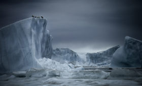 Первая лекция курса «Арктическая среда» 20 февраля