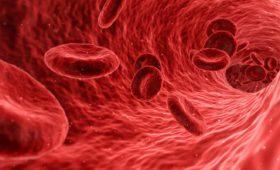 Метод раннего детектирования свёртывания крови