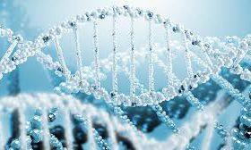 Впечатления ребят о программе «Биоинформатика» ФБМФ