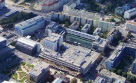 Позиции аспиранта и постдока по теоретической биофизике в Венском биоцентре